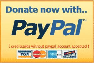 how-to-add-paypal-donate-button